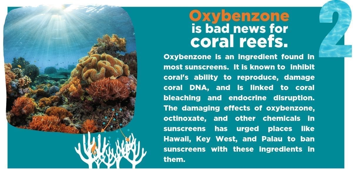 All Good infographic on harmful effects of oxybenzone for coral reefs
