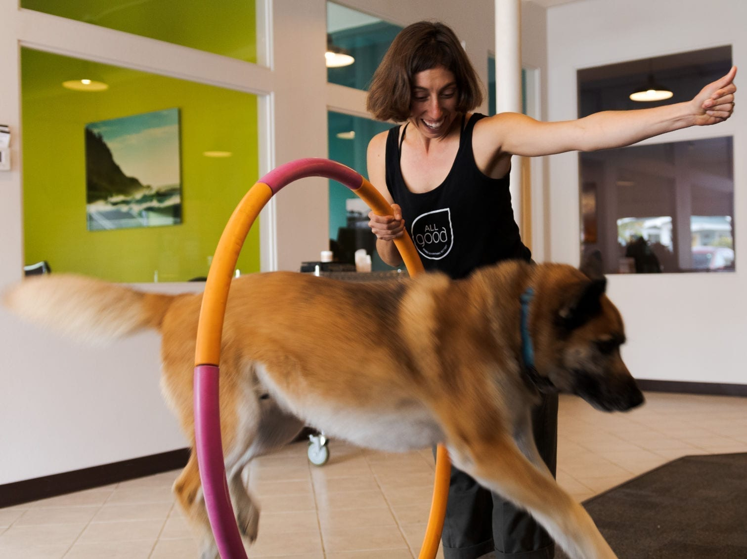 All Good team member holding hoop with dog jumping through